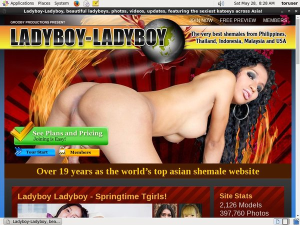 Ladyboy-ladyboy.com Checkout Form